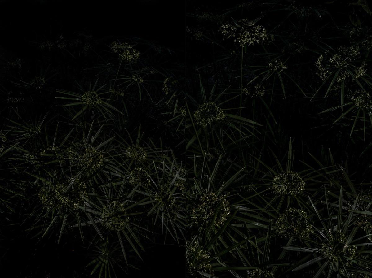 Quest'opera è un dittico, composto da due foto verticali 105cm x 70cm.